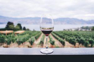 Jean-François Floch - Le vin connecté