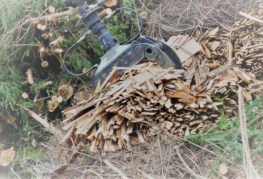 Le développement de la biomasse